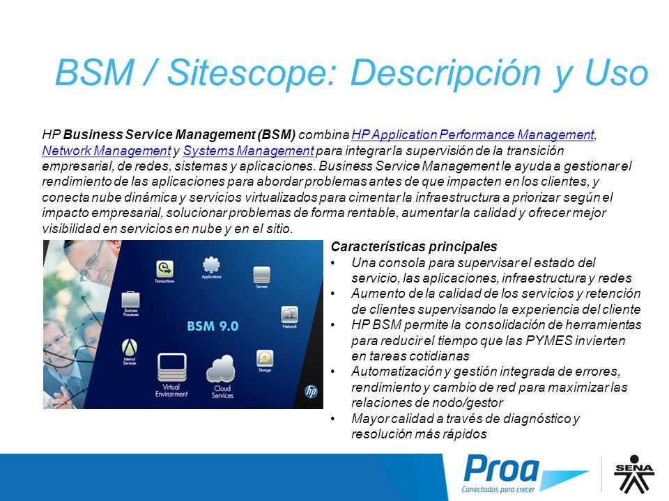 BSM / Sitescope: Descripción y Uso I