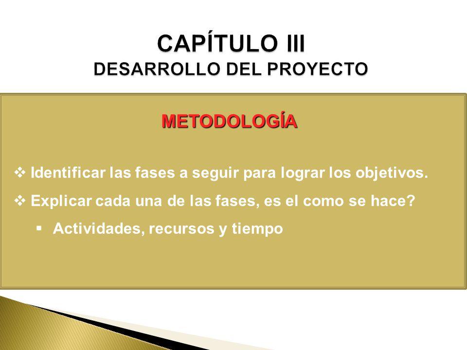 CAPÍTULO III DESARROLLO DEL PROYECTO