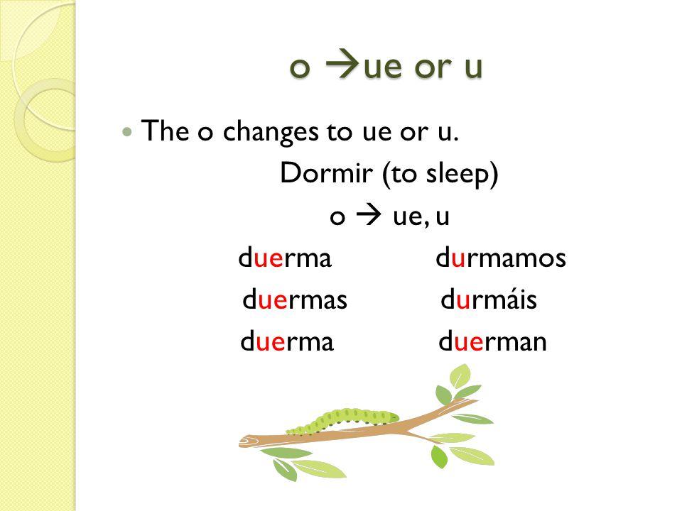 o ue or u The o changes to ue or u. Dormir (to sleep) o  ue, u