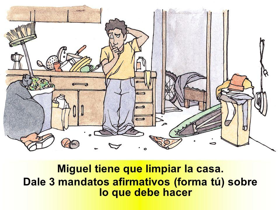 Miguel tiene que limpiar la casa.