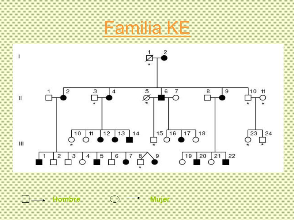 Familia KE Hombre Mujer