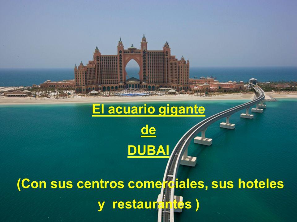 (Con sus centros comerciales, sus hoteles