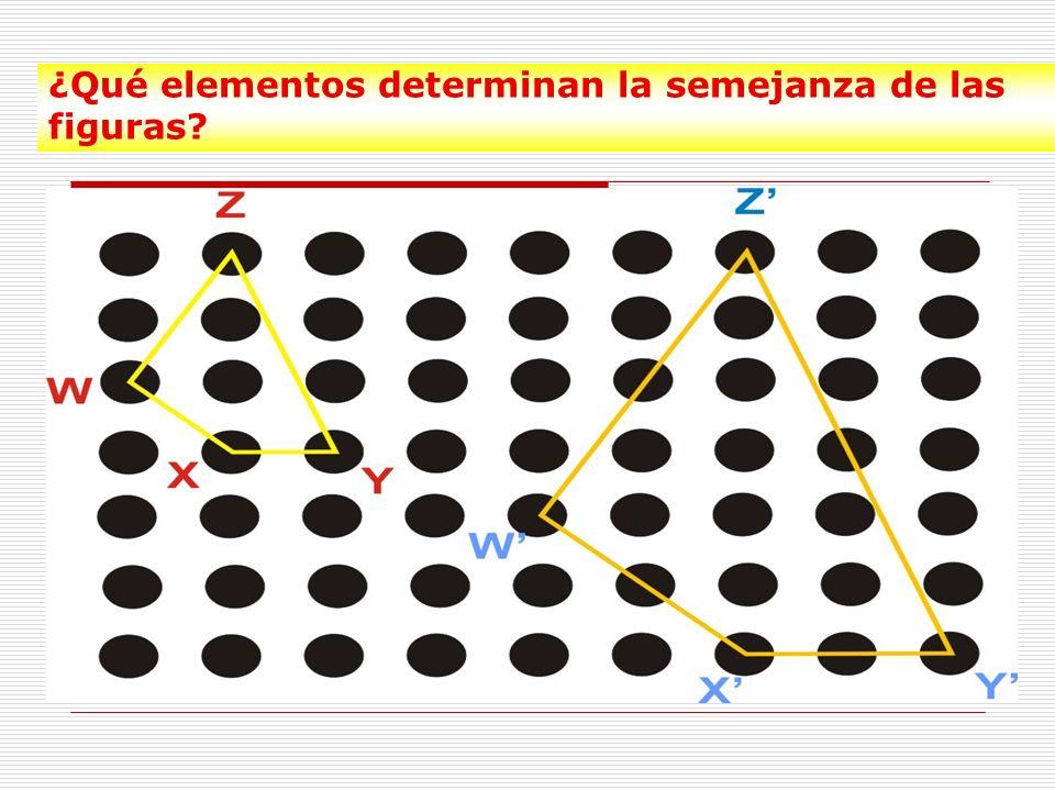 ¿Qué elementos determinan la semejanza de las figuras