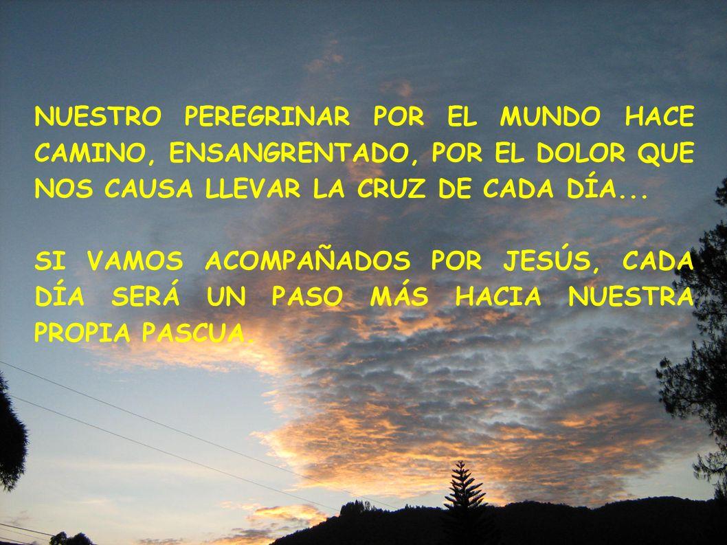 NUESTRO PEREGRINAR POR EL MUNDO HACE CAMINO, ENSANGRENTADO, POR EL DOLOR QUE NOS CAUSA LLEVAR LA CRUZ DE CADA DÍA...