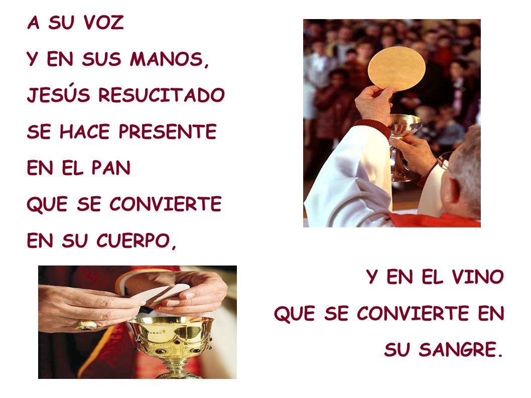 A SU VOZ Y EN SUS MANOS, JESÚS RESUCITADO. SE HACE PRESENTE. EN EL PAN. QUE SE CONVIERTE. EN SU CUERPO,