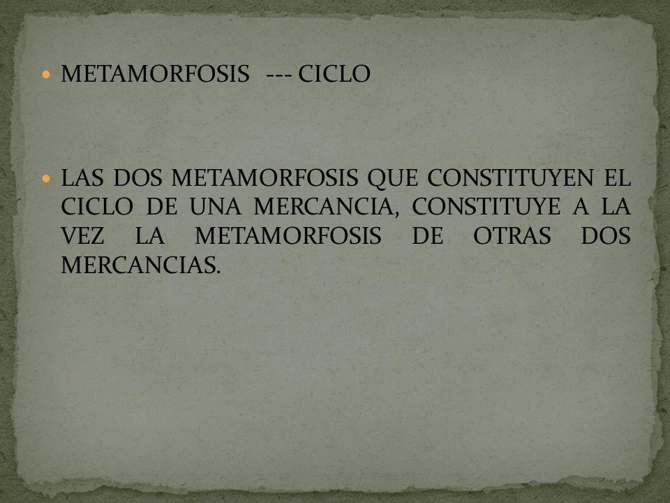 METAMORFOSIS --- CICLO