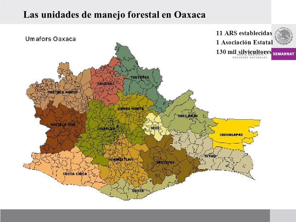 Las unidades de manejo forestal en Oaxaca