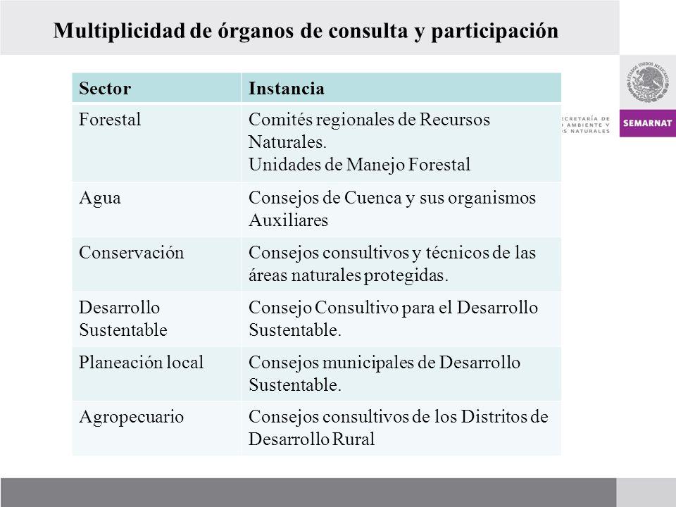Multiplicidad de órganos de consulta y participación