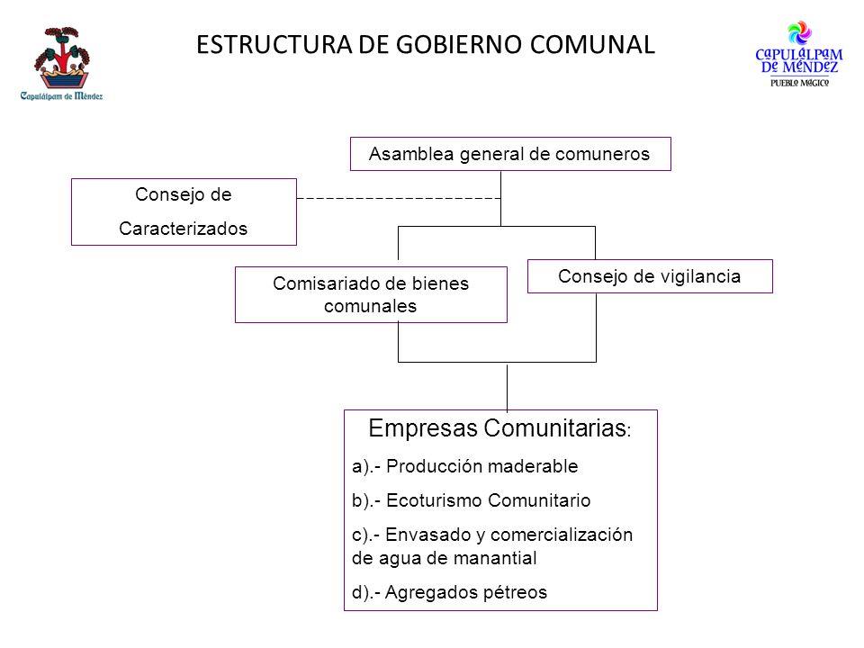 ESTRUCTURA DE GOBIERNO COMUNAL