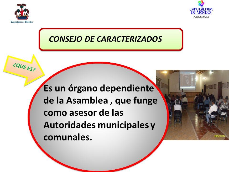 CONSEJO DE CARACTERIZADOS
