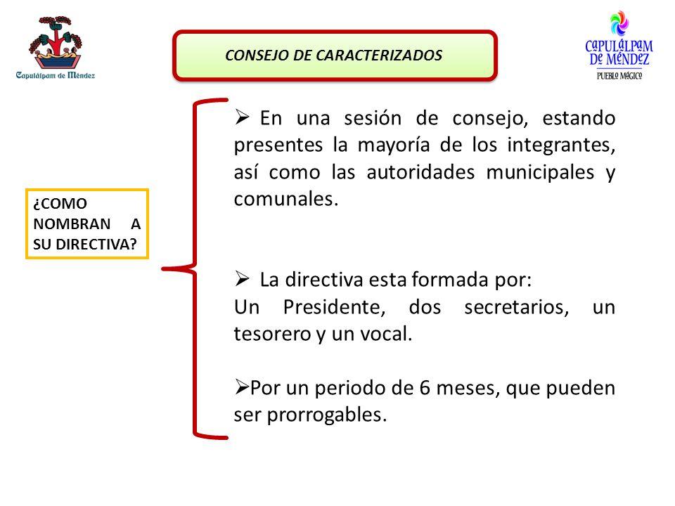 La directiva esta formada por: