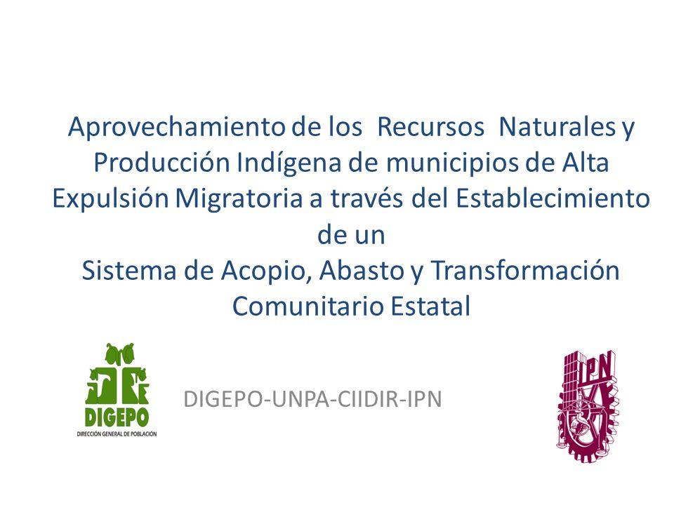 DIGEPO-UNPA-CIIDIR-IPN