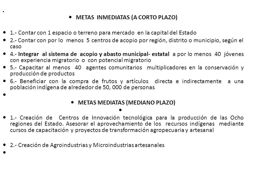 METAS INMEDIATAS (A CORTO PLAZO)