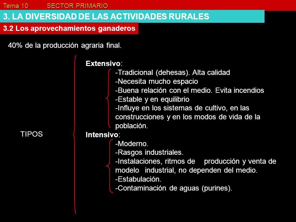 3. LA DIVERSIDAD DE LAS ACTIVIDADES RURALES