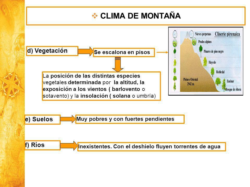CLIMA DE MONTAÑA d) Vegetación e) Suelos f) Ríos Se escalona en pisos