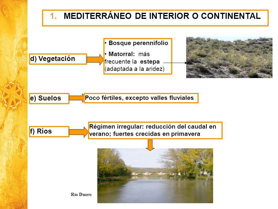 MEDITERRÁNEO DE INTERIOR O CONTINENTAL