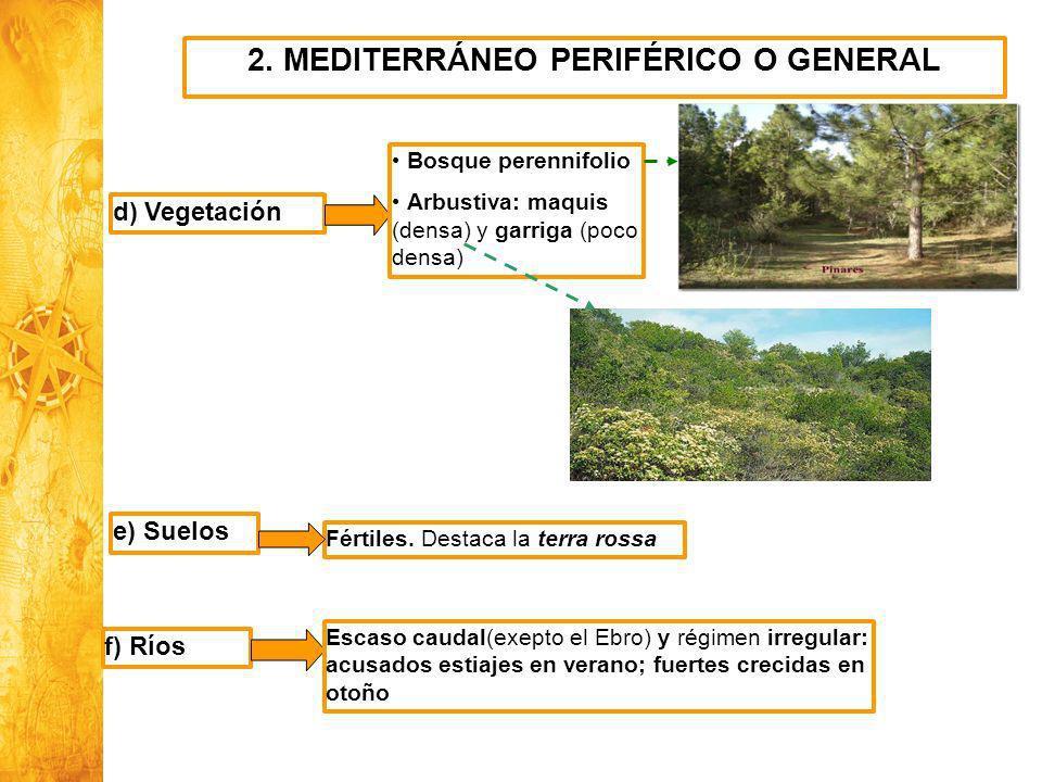 2. MEDITERRÁNEO PERIFÉRICO O GENERAL