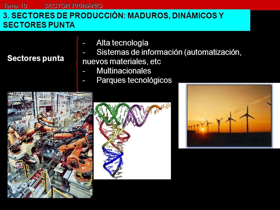 3. SECTORES DE PRODUCCIÓN: MADUROS, DINÁMICOS Y SECTORES PUNTA