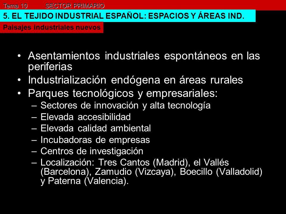 Asentamientos industriales espontáneos en las periferias