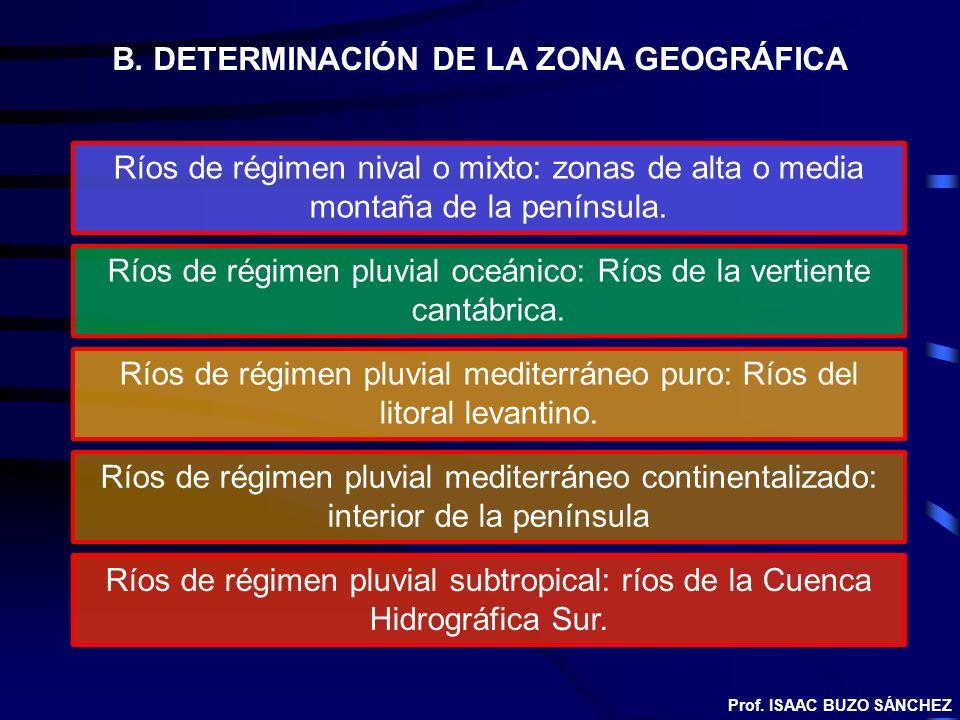 B. DETERMINACIÓN DE LA ZONA GEOGRÁFICA