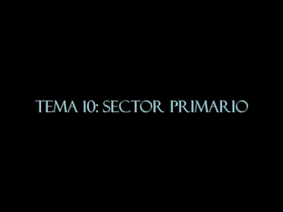 TEMA 10: Sector Primario