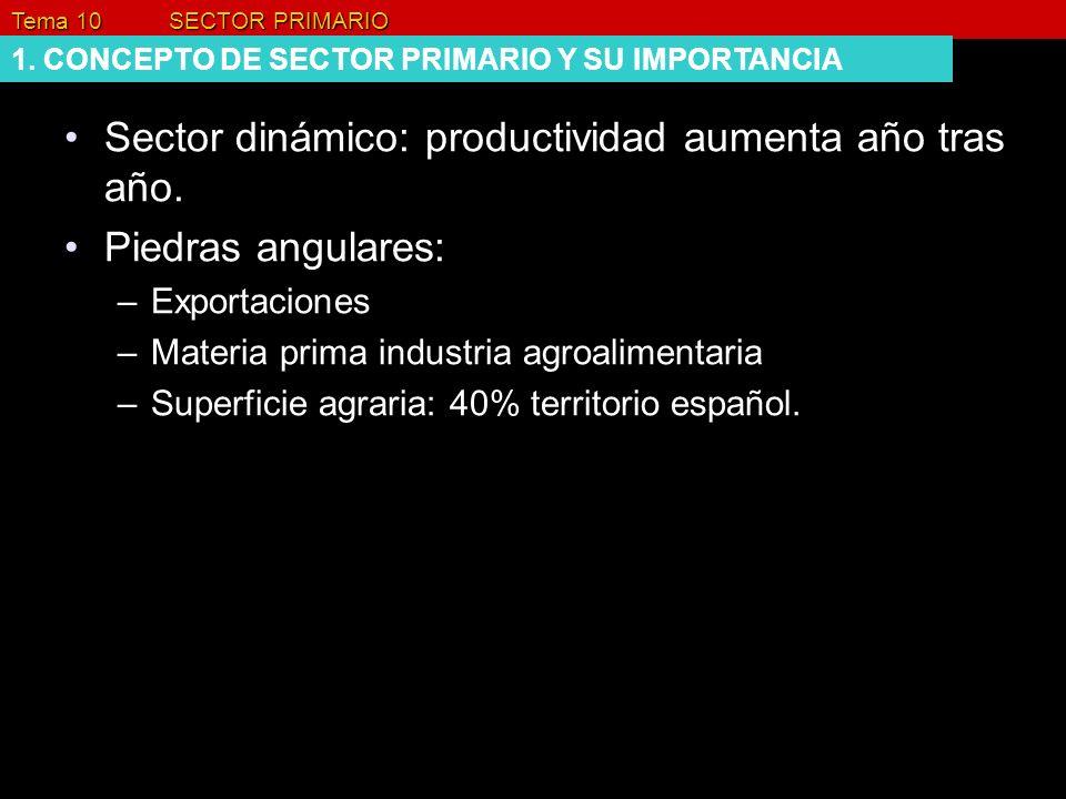 Sector dinámico: productividad aumenta año tras año.