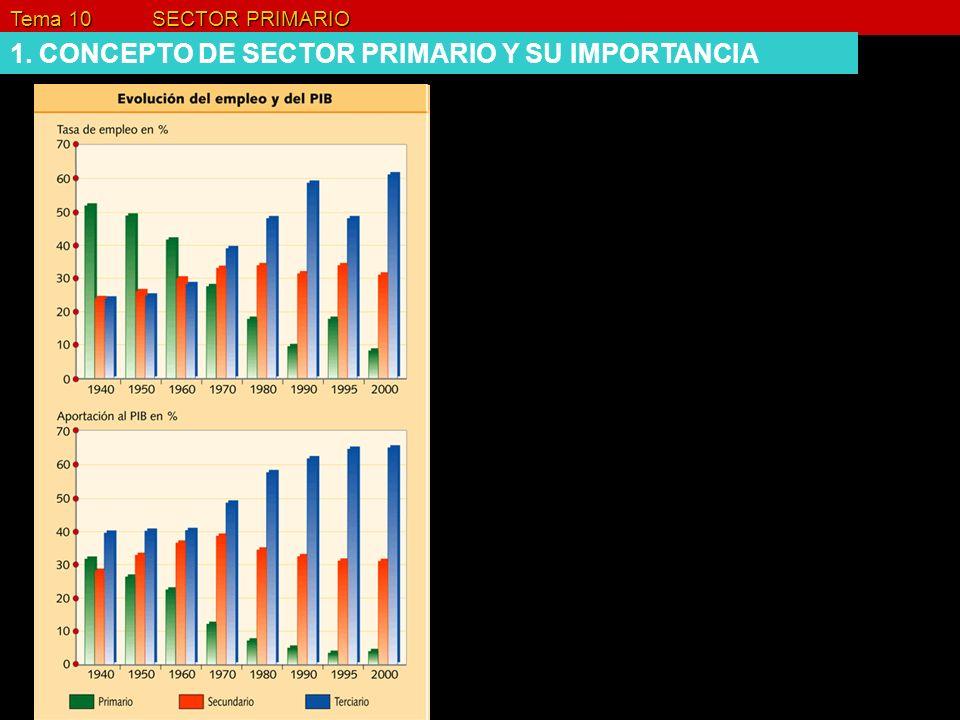 1. CONCEPTO DE SECTOR PRIMARIO Y SU IMPORTANCIA