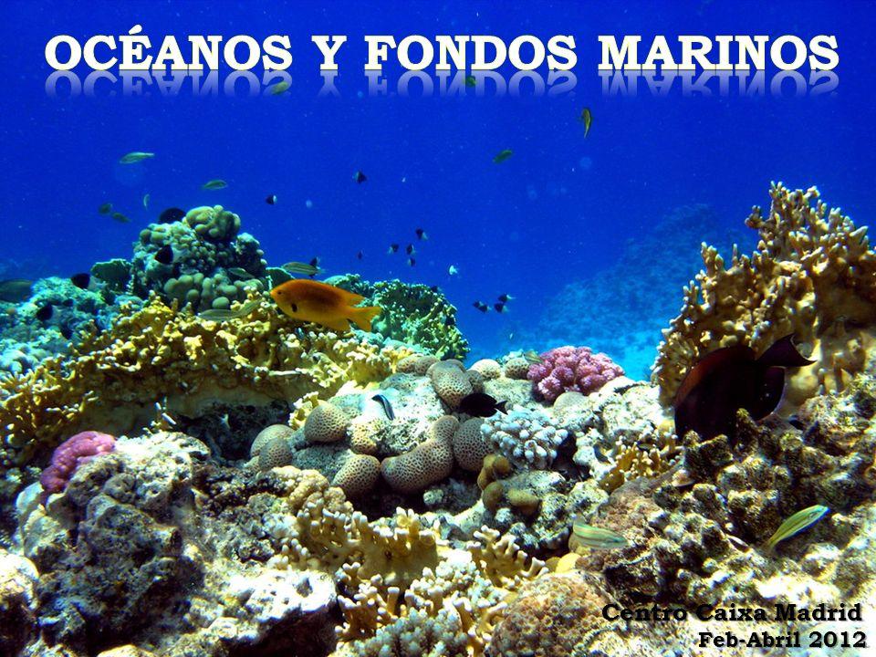 océanos y fondos marinos