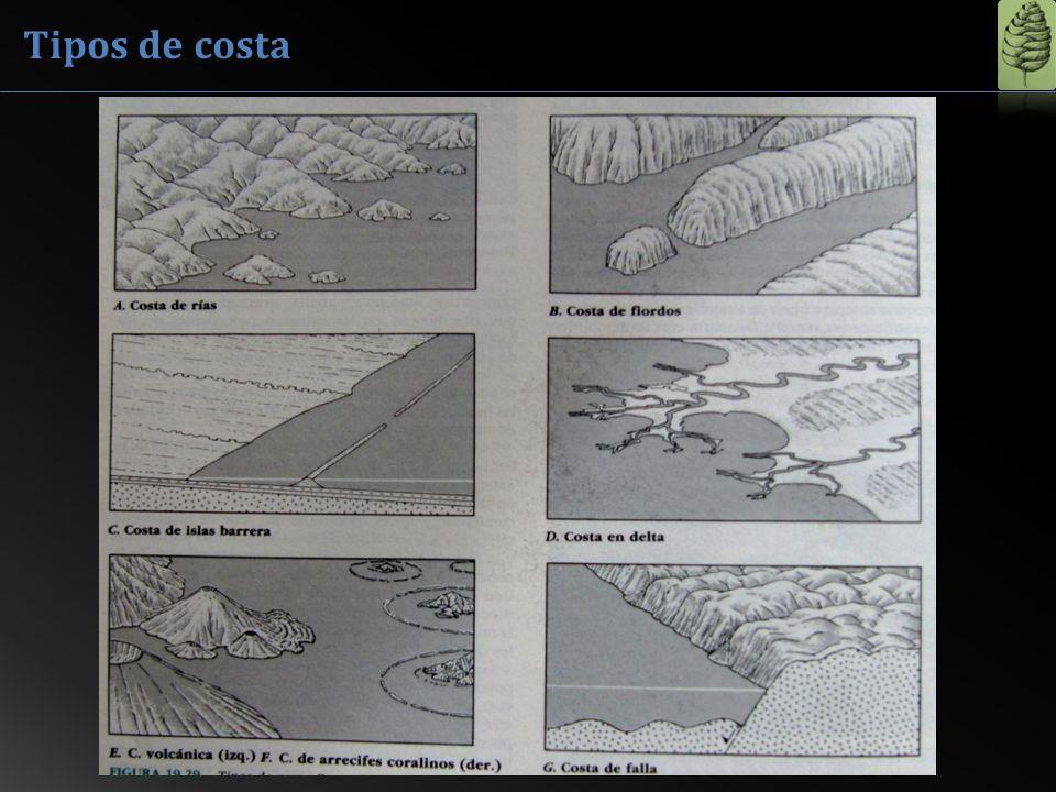 Tipos de costa