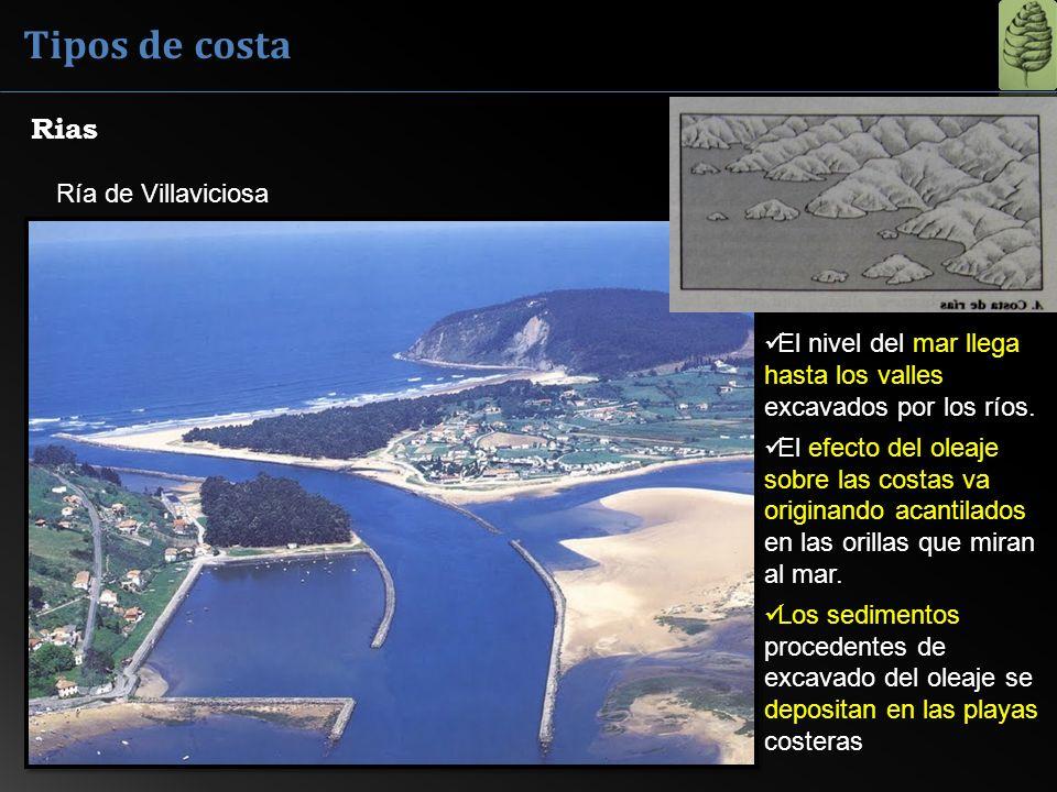 Tipos de costa Rias Ría de Villaviciosa