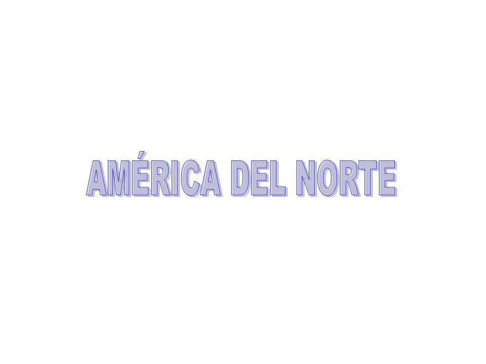 AMÉRICA DEL NORTE