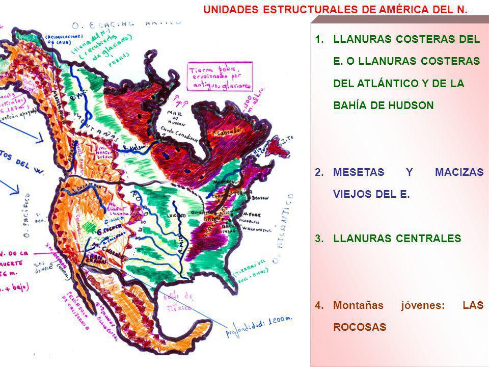 UNIDADES ESTRUCTURALES DE AMÉRICA DEL N.