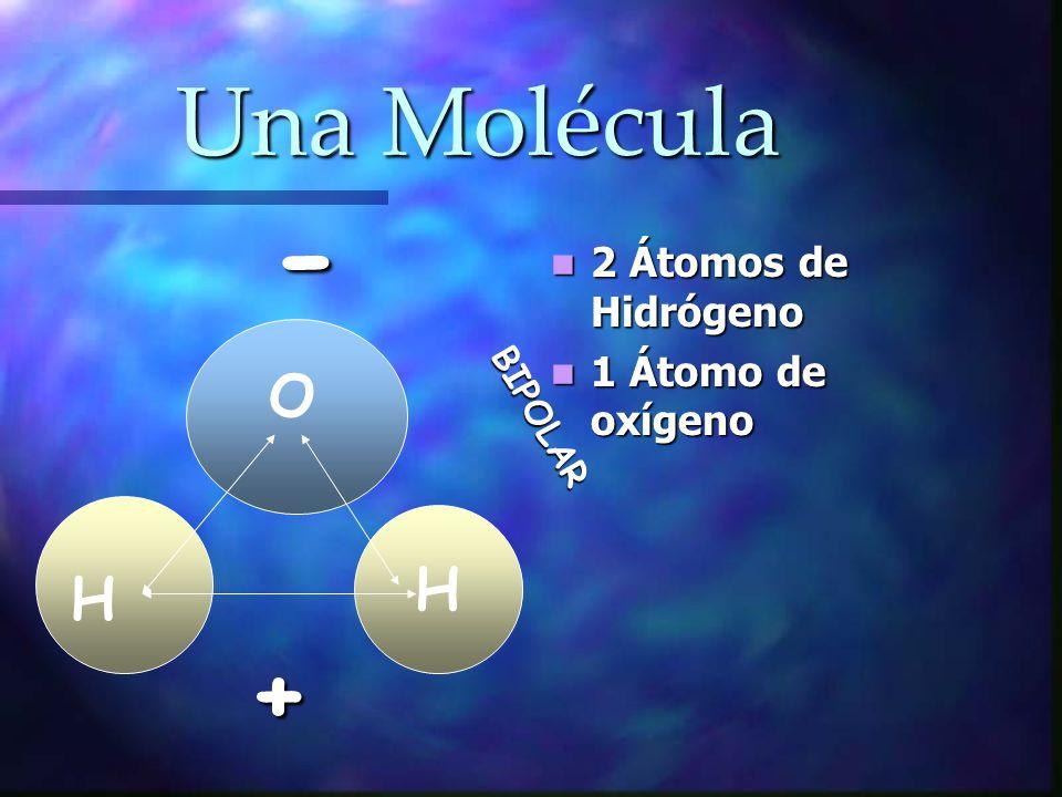 - Una Molécula + O H H 2 Átomos de Hidrógeno 1 Átomo de oxígeno