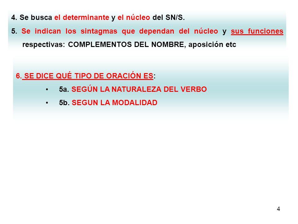 4. Se busca el determinante y el núcleo del SN/S.