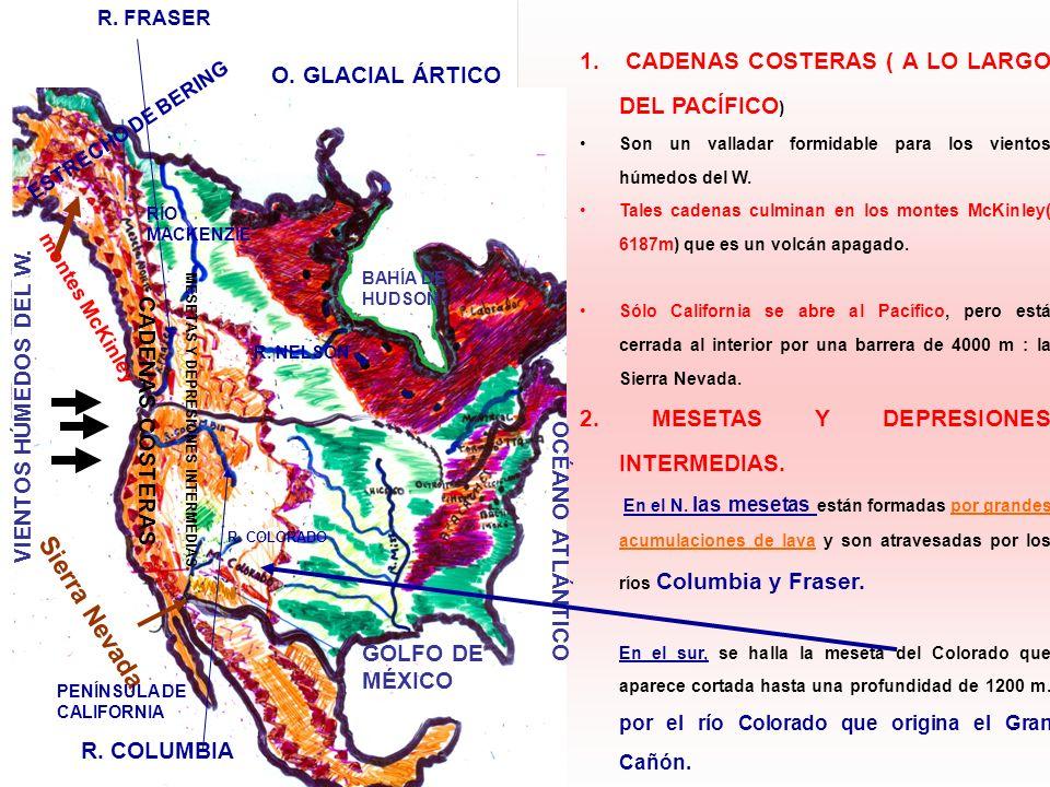 Sierra Nevada. CADENAS COSTERAS ( A LO LARGO DEL PACÍFICO)