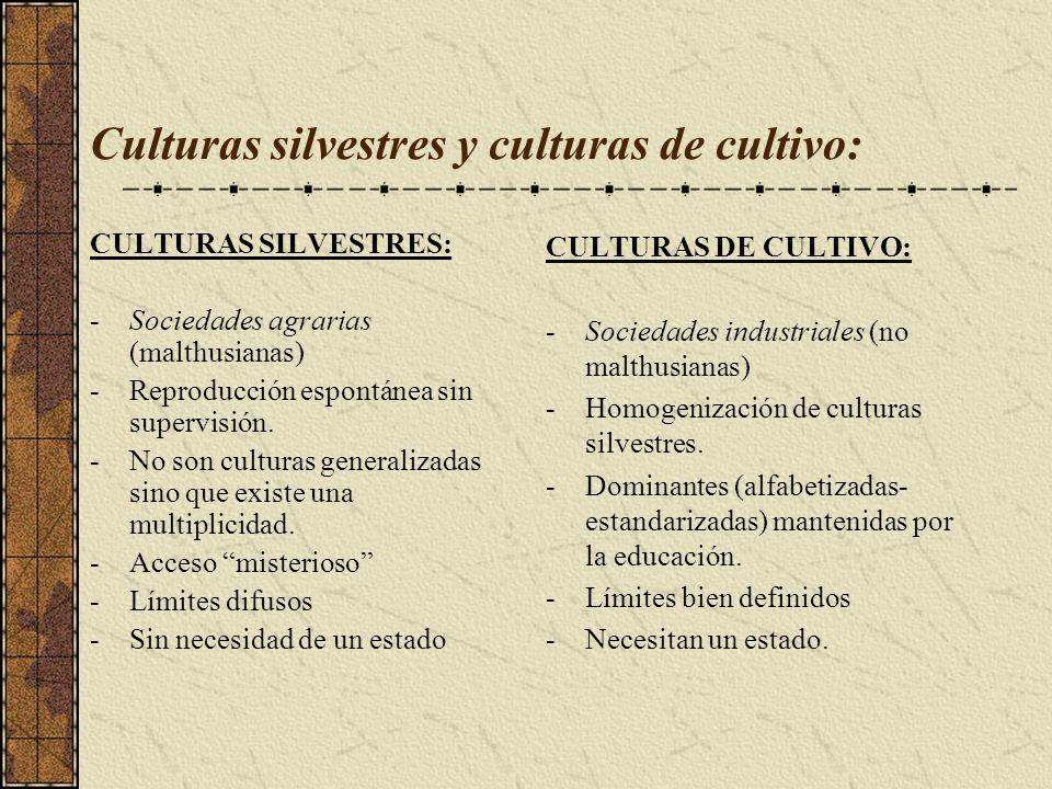 Culturas silvestres y culturas de cultivo: