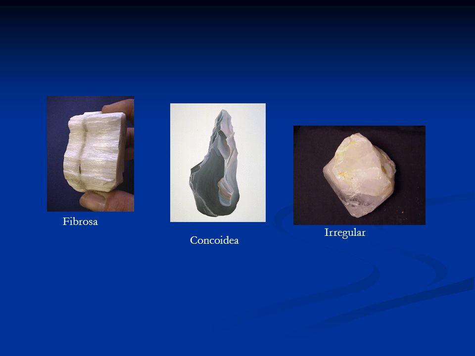 Fibrosa Irregular Concoidea