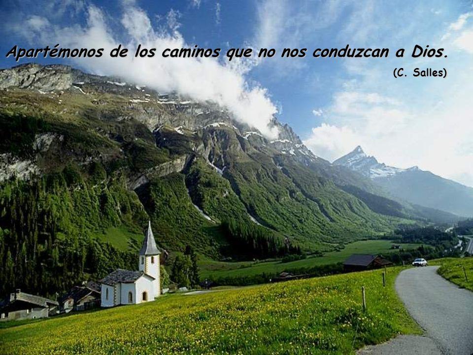 Apartémonos de los caminos que no nos conduzcan a Dios.