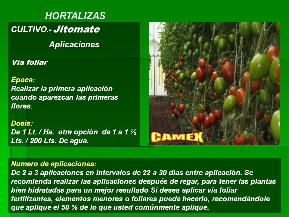 CAMEX HORTALIZAS CULTIVO.- Jitomate Aplicaciones Vía foliar Época: