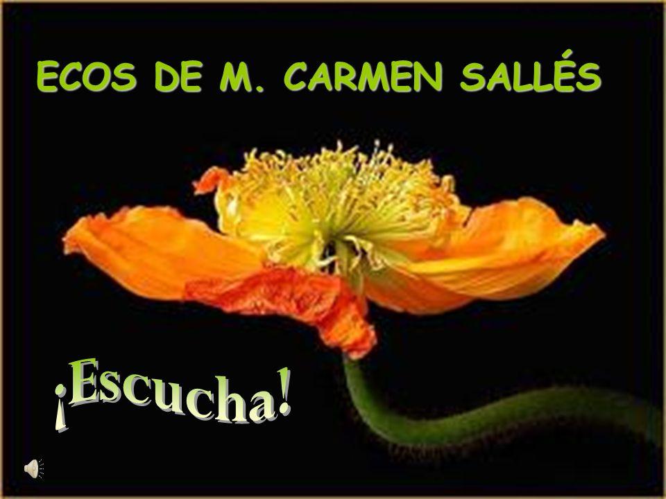 ECOS DE M. CARMEN SALLÉS ¡Escucha!