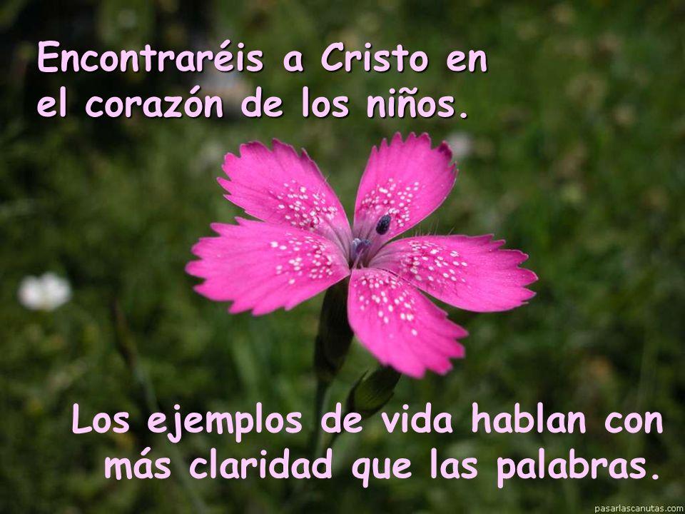 Encontraréis a Cristo en el corazón de los niños.