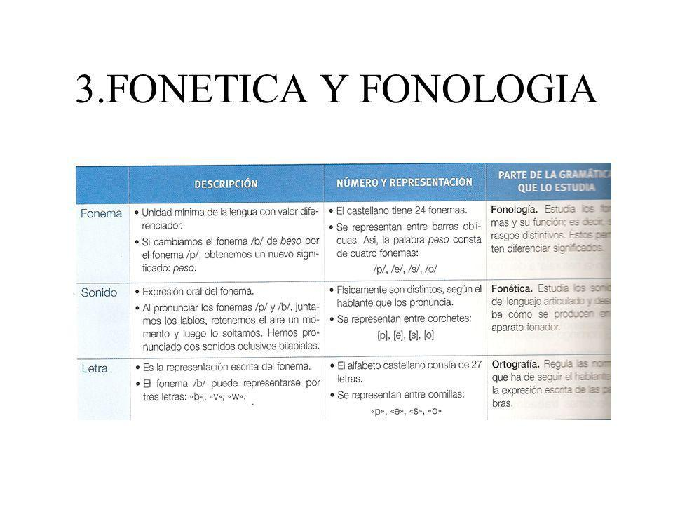 3.FONETICA Y FONOLOGIA