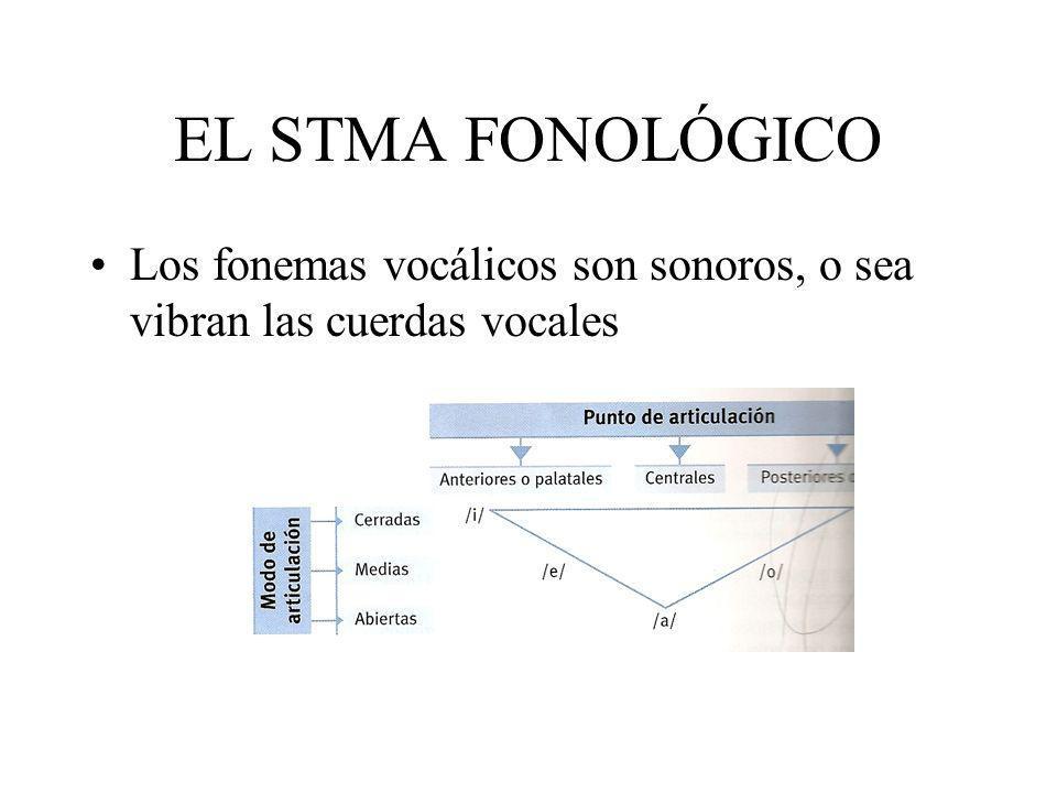 EL STMA FONOLÓGICO Los fonemas vocálicos son sonoros, o sea vibran las cuerdas vocales
