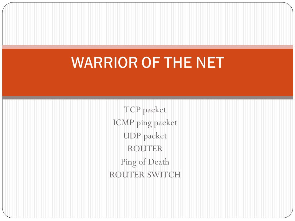 WARRIOR OF THE NET TCP packet ICMP ping packet UDP packet ROUTER