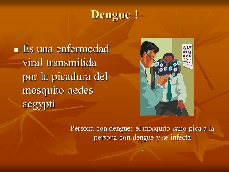 Dengue ! Es una enfermedad viral transmitida por la picadura del mosquito aedes aegypti.