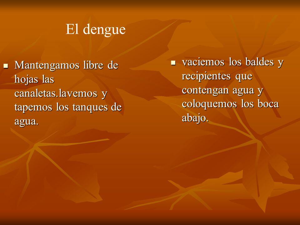 El dengue vaciemos los baldes y recipientes que contengan agua y coloquemos los boca abajo.
