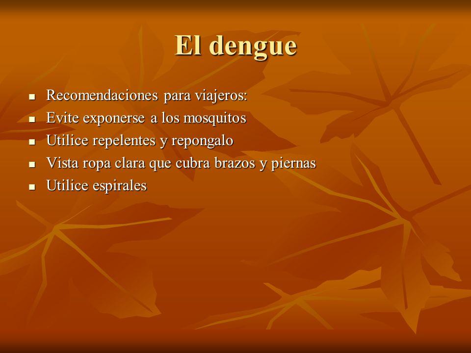 El dengue Recomendaciones para viajeros: