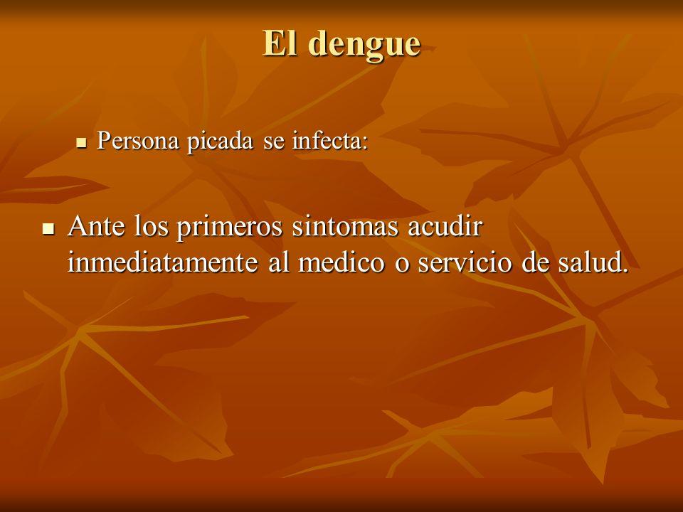 El denguePersona picada se infecta: Ante los primeros sintomas acudir inmediatamente al medico o servicio de salud.
