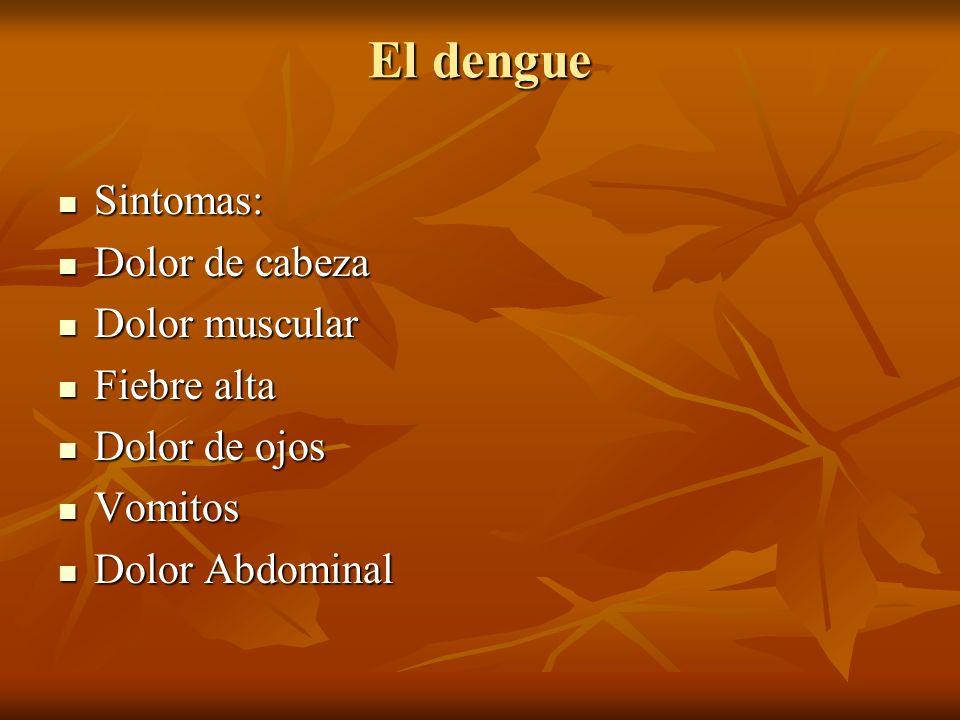 El dengue Sintomas: Dolor de cabeza Dolor muscular Fiebre alta