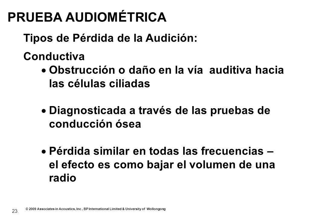PRUEBA AUDIOMÉTRICA Tipos de Pérdida de la Audición: Conductiva